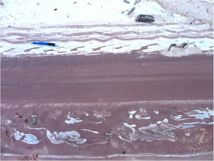 Formación Taiguati, Rio Macharetí, Subandino Sur de Bolivia-2